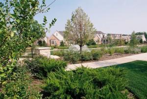 Fox Meadows Subdivision, Naperville, IL