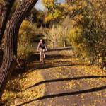 Linear Park Bike Path - Carson City, NV