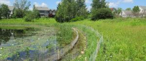 lake restoration services